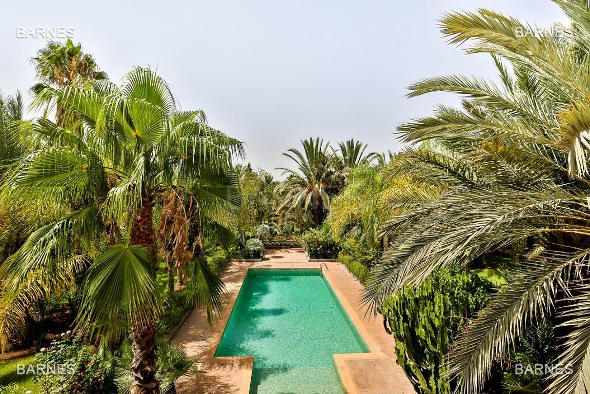 Très belle propriété a la palmeraie, véritable opportunité en terme de rapport qualité prix. 6 chambres un hectare de terrain arboré, dans la belle palmeraie , belle piscine. Matériaux noble marbre, boiserie en cèdres… picture 19