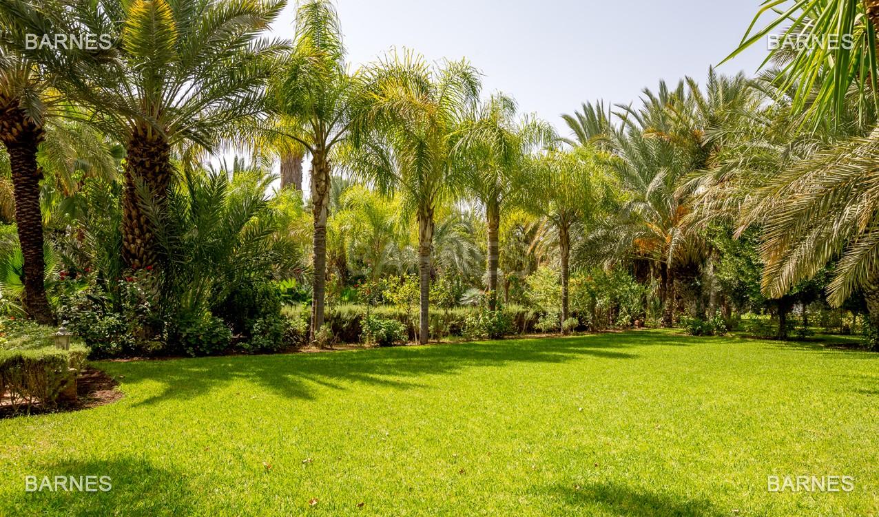 Très belle propriété a la palmeraie, véritable opportunité en terme de rapport qualité prix. 6 chambres un hectare de terrain arboré, dans la belle palmeraie , belle piscine. Matériaux noble marbre, boiserie en cèdres… picture 18