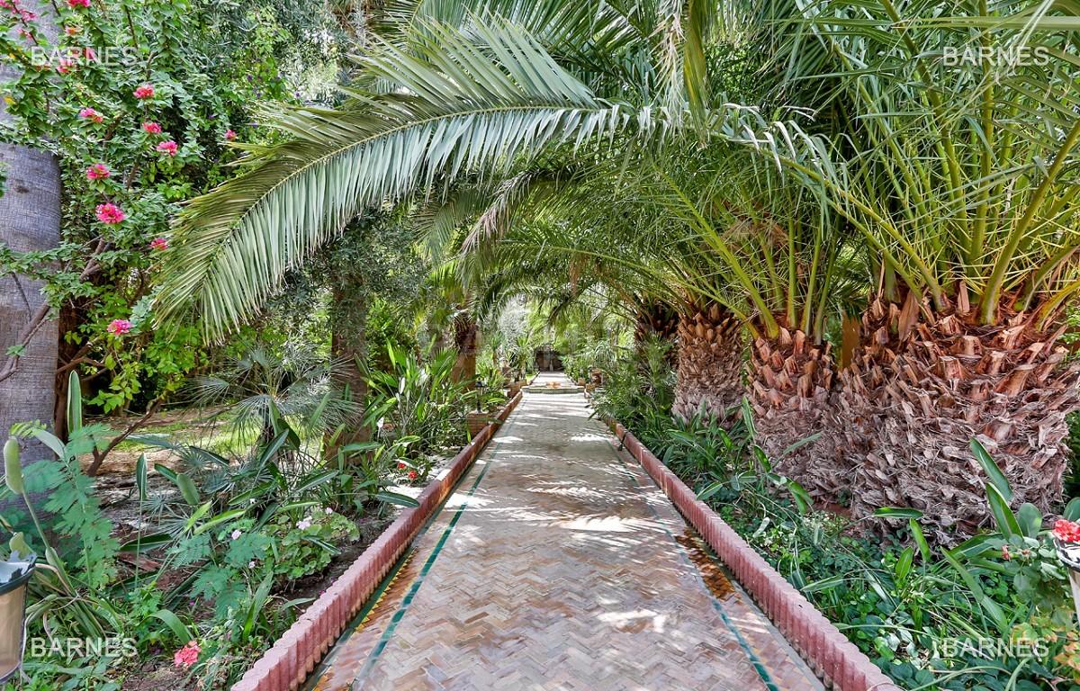 Très belle propriété a la palmeraie, véritable opportunité en terme de rapport qualité prix. 6 chambres un hectare de terrain arboré, dans la belle palmeraie , belle piscine. Matériaux noble marbre, boiserie en cèdres… picture 17