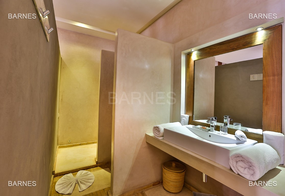 Maison d'hôtes, 8 chambres, 8 salles de bains, bassin, terrasse, jacuzzi. picture 11