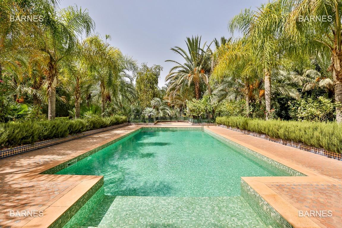 Très belle propriété a la palmeraie, véritable opportunité en terme de rapport qualité prix. 6 chambres un hectare de terrain arboré, dans la belle palmeraie , belle piscine. Matériaux noble marbre, boiserie en cèdres… picture 2
