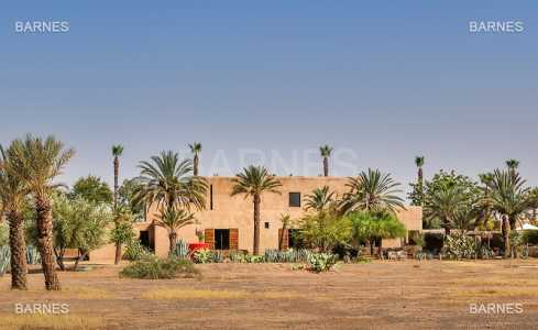 Maison contemporaine MARRAKECH - Ref M-51430